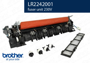 LR2242001 four brother
